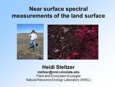 Near surface spectral measurements of the land surface Heidi Steltzer Plant and Ecosystem Ecologist Natural Resource Ecology.