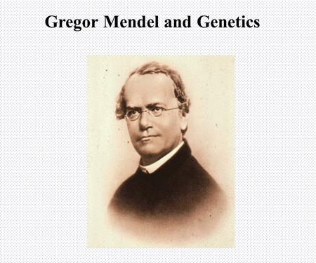 Gregor Mendel and Genetics The Work of Mendel Genetics = scientific study of heredity Heredity = characteristics that are passed on to the next generation.