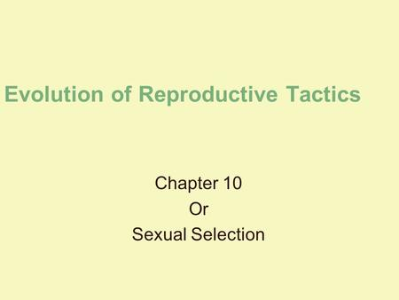 Evolution of Reproductive Tactics Chapter 10 Or Sexual Selection.