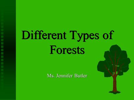 Different Types of Forests Ms. Jennifer Butler Introduction  There are two different types of forests.  Today we are going to identify both types and.