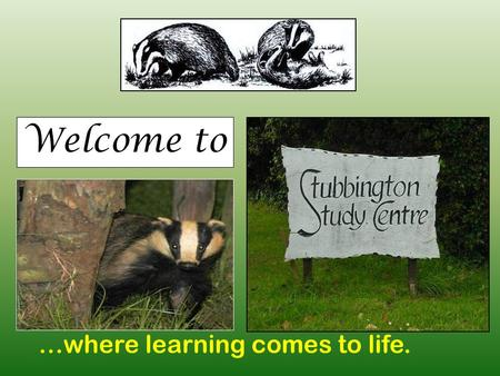 Welcome to …where learning comes to life.. Where are we? The Solent Stubbington Study Centre Conservation Area Dorms Sports fields Earthquake.