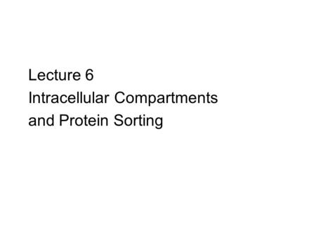 Lecture 6 Intracellular Compartments and Protein Sorting.