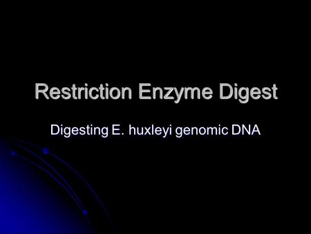 Restriction Enzyme Digest Digesting E. huxleyi genomic DNA.