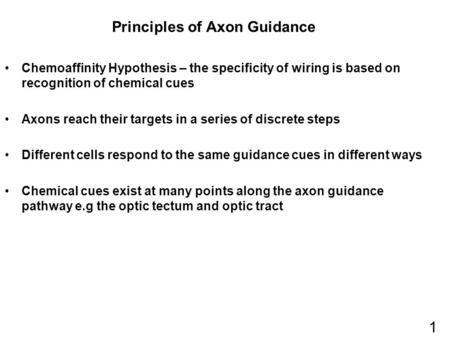Principles of Axon Guidance Chemoaffinity Hypothesis – the specificity of wiring is based on recognition of chemical cues Axons reach their targets in.