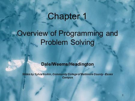 1 Chapter 1 Overview of Programming and Problem Solving Dale/Weems/Headington Slides by Sylvia Sorkin, Community College of Baltimore County - Essex Campus.