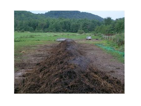 Why Compost? An Analysis of Composting As an Environmental Remediation Technology – US EPA – 1998 EPA530-R-98-008.