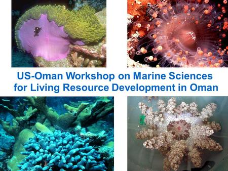 US-Oman Workshop on Marine Sciences for Living Resource Development in Oman.