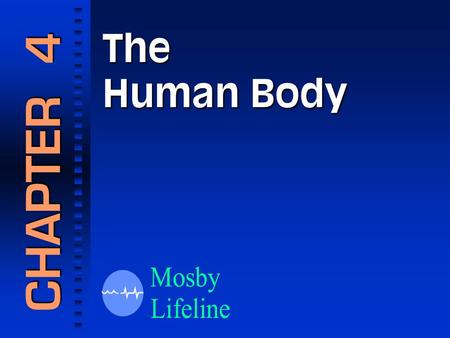 The Human Body CHAPTER 4. Anatomic Terms The Anatomic Position.