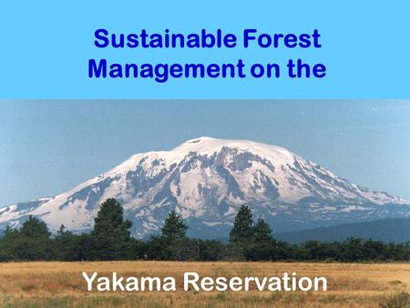 Sustainable Forest Management on the Yakama Reservation.