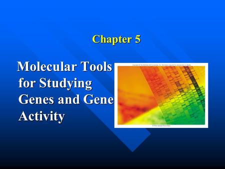 Chapter 5 Molecular <strong>Tools</strong> for Studying Genes and Gene Activity Molecular <strong>Tools</strong> for Studying Genes and Gene Activity.