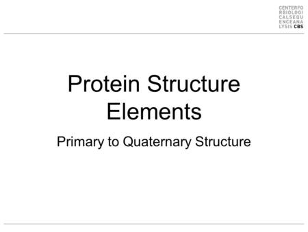 Protein Structure Elements Primary to Quaternary Structure.