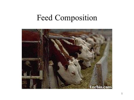 1 Feed Composition. 2 Concentrate Feeds that are low in fiber and high in total digestible nutrients like GRAIN.