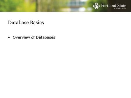 Database Basics Overview of Databases. Arrivederci Pacioli Five primary weaknesses of traditional accounting system (debits and credits): Focus on subset.