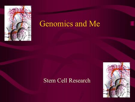 Genomics and Me Stem Cell Research. Terminology Totipotent Pluripotent Multipotent Differentiation Blastocyst.