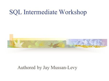 SQL Intermediate Workshop Authored by Jay Mussan-Levy.