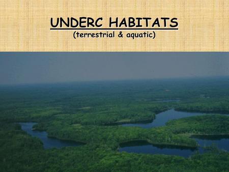 UNDERC HABITATS (terrestrial & aquatic). CHANGE CONTINUES EVOLUTIONARY AND GEOLOGICAL CHANGE (inherent) ECOLOGY OF AQUATIC HABITATS (inherent) ECOLOGY.
