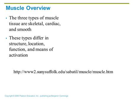 Copyright © 2006 Pearson Education, Inc., publishing as Benjamin Cummings Muscle Overview  The three types of muscle tissue are skeletal, cardiac, and.