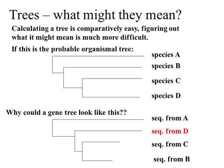 Trees – what might they mean? Calculating a tree is comparatively easy, figuring out what it might mean is much more difficult. If this is the probable.