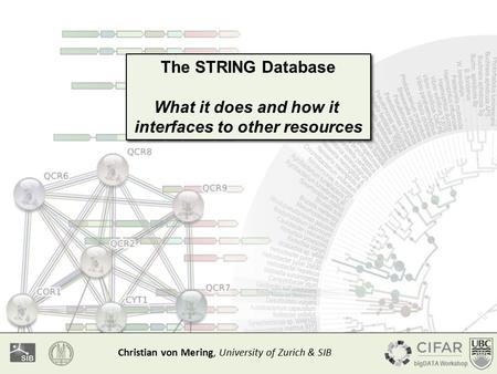 The STRING Database What it does and how it interfaces to other resources The STRING Database What it does and how it interfaces to other resources Christian.