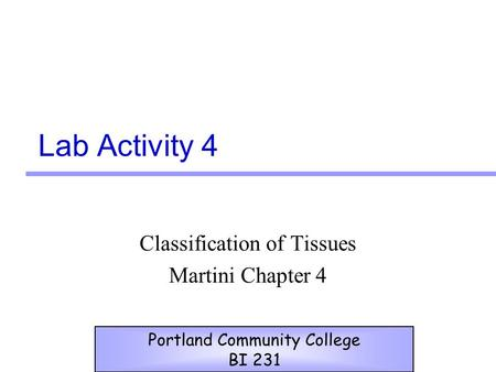 Classification of Tissues Martini Chapter 4