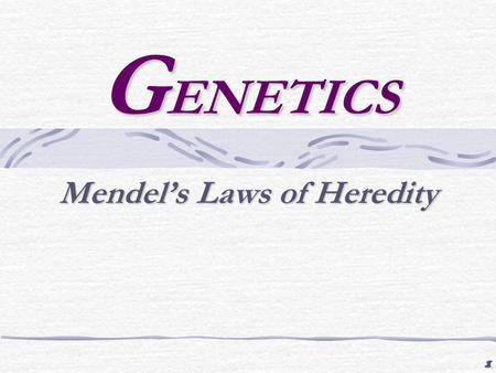 1 G ENETICS Mendel's Laws of Heredity. 2 Mendel's Laws Law of segregation The two alleles for ___________________________________ A parent will pass down.