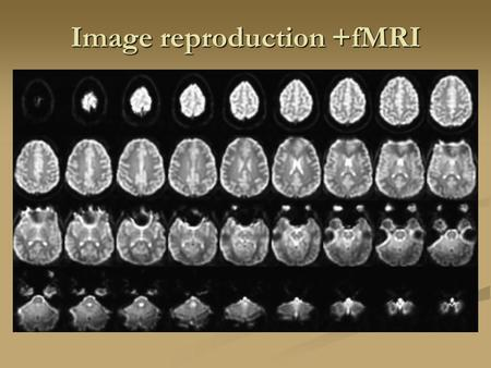 Image reproduction +fMRI. Filtered Back Projection.