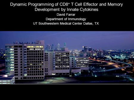 Dynamic Programming of CD8 + T Cell Effector and Memory Development by Innate Cytokines David Farrar Department of Immunology UT Southwestern Medical Center.