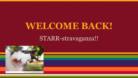 WELCOME BACK! STARR-stravaganza!!.