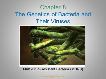 Chapter 8 The Genetics of Bacteria and Their Viruses © John Wiley & Sons, Inc. Multi-Drug-Resistant Bacteria (MDRB)