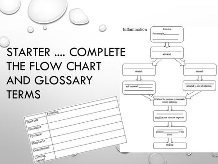 STARTER.... COMPLETE THE FLOW CHART AND GLOSSARY TERMS.