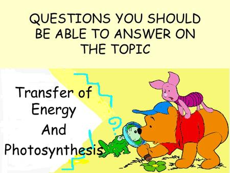 QUESTIONS YOU SHOULD BE ABLE TO ANSWER ON THE TOPIC Transfer of Energy And Photosynthesis.