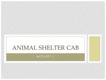 Animal Shelter CAB Activity 1.