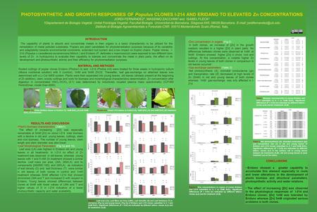 PHOTOSYNTHETIC AND GROWTH RESPONSES OF Populus CLONES I-214 AND ERIDANO TO ELEVATED Zn CONCENTRATIONS JORDI FERNÀNDEZ 1, MASSIMO ZACCHINI 2 and ISABEL.