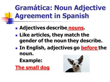 Gramática: Noun Adjective Agreement in Spanish Adjectives describe nouns. Like articles, they match the gender of the noun they describe. In English, adjectives.