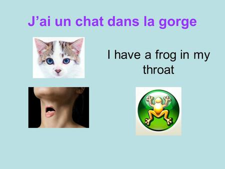 J'ai un chat dans la gorge I have a frog in my throat.