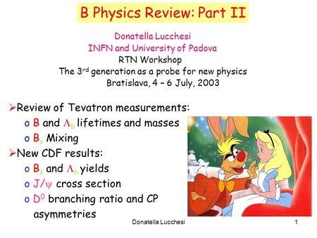 Donatella Lucchesi1 B Physics Review: Part II Donatella Lucchesi INFN and University of Padova RTN Workshop The 3 rd generation as a probe for new physics.