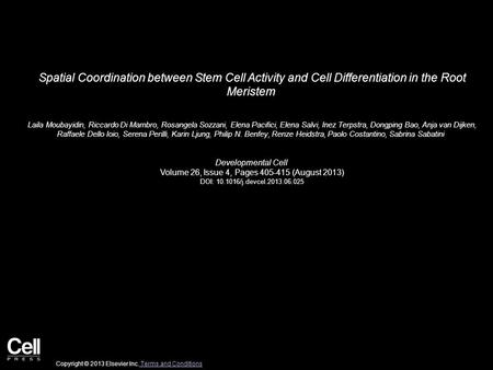 Spatial Coordination between Stem Cell Activity and Cell Differentiation in the Root Meristem Laila Moubayidin, Riccardo Di Mambro, Rosangela Sozzani,