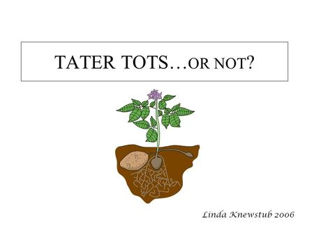 TATER TOTS… OR NOT ? Linda Knewstub 2006. This ppt can be used to help teachers introduce the Tater tots (tissue culture) lab It can also be used to help.