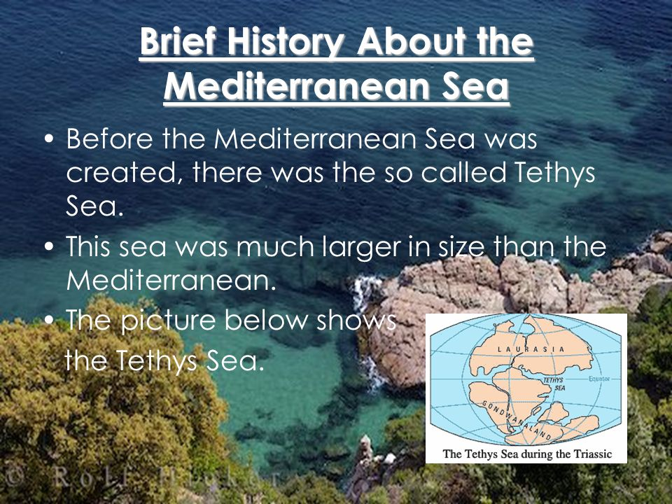 Facts and General Information about the Mediterranean Sea The Mediterranean is 2,400 km long with a maximum width of 1,600 km; its greatest depth is 4,400 m, off Cape Matapan, Greece.