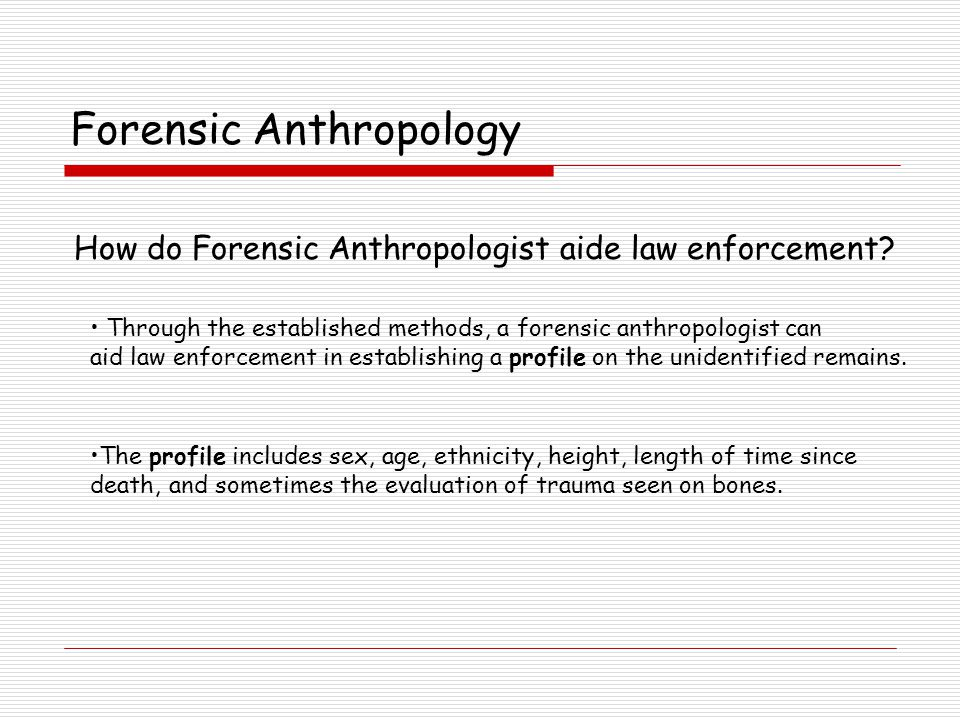 Forensic Anthropology Is the bone human.A human adult has 206 bones.