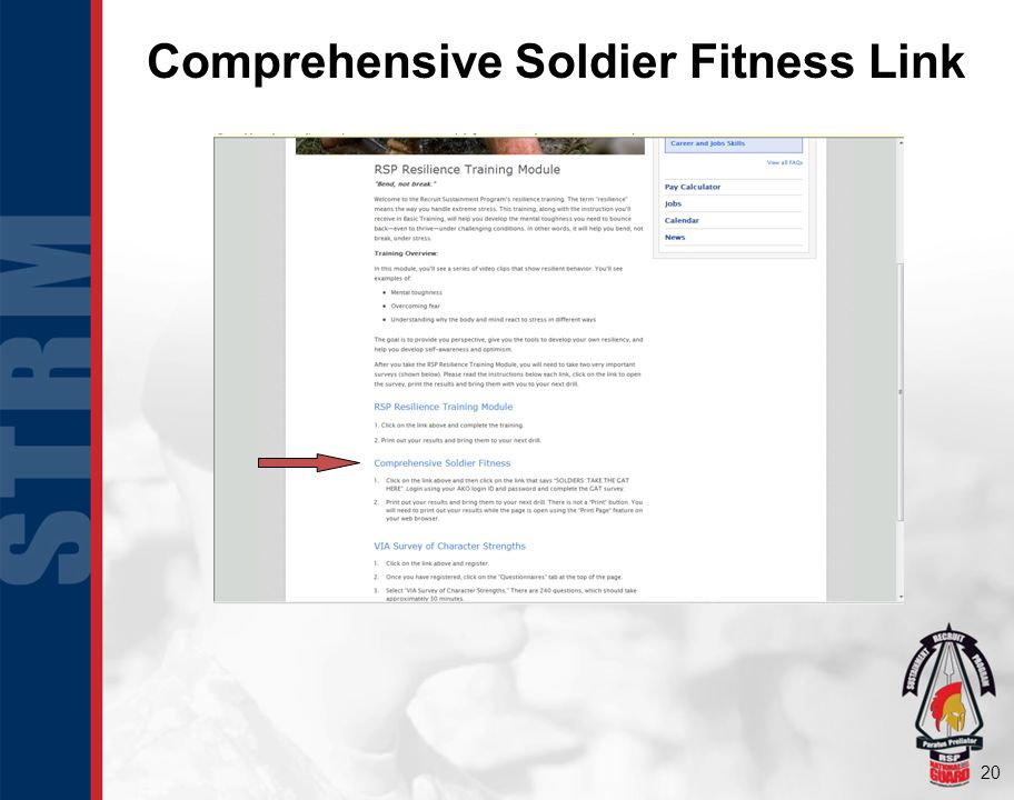 21 Comprehensive Soldier Fitness Page