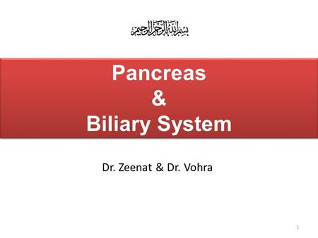 Pancreas & Biliary System