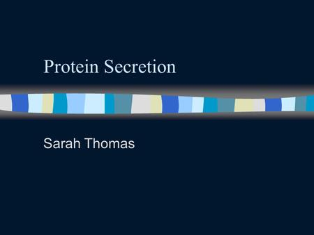 Protein Secretion Sarah Thomas. Secretory Pathway n Ribosomes that are synthesizing proteins and bear an ER signal sequence bind to rough ER. n Once transcription.