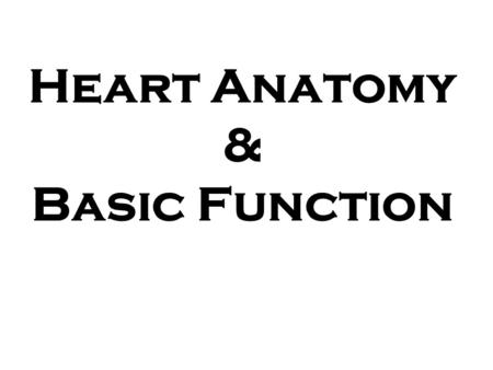 Heart Anatomy & Basic Function