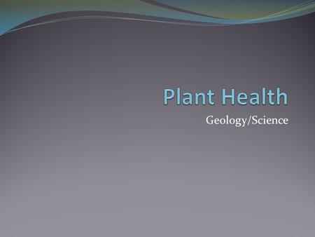 Geology/Science. Needs of a Plant: LIGHT Healthy plants need light, air, water and nourishment in order to grow well. Photosynthesis: all green parts.