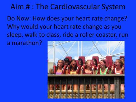 Aim # : The Cardiovascular System Do Now: How does your heart rate change? Why would your heart rate change as you sleep, walk to class, ride a roller.