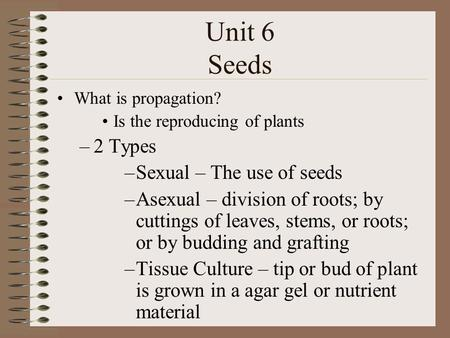 Unit 6 Seeds What is propagation? Is the reproducing of plants –2 Types –Sexual – The use of seeds –Asexual – division of roots; by cuttings of leaves,