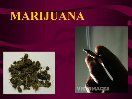 MARIJUANA Gateway drug?? What does that mean?.