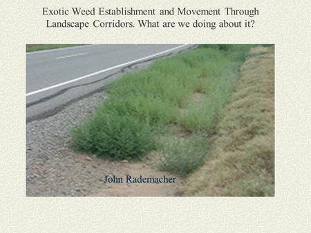 Exotic Weed Establishment and Movement Through Landscape Corridors. What are we doing about it? John Rademacher.