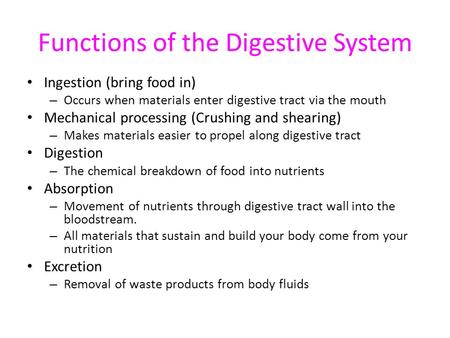 Functions of the Digestive System Ingestion (bring food in) – Occurs when materials enter digestive tract via the mouth Mechanical processing (Crushing.
